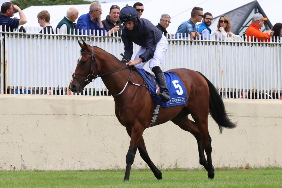 Image result for gustav klimt horse